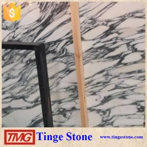 China Italian Arabescato Mable Slab With Factory Price on sale