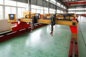 China 300mm thickness flame cutting machine for sale on sale