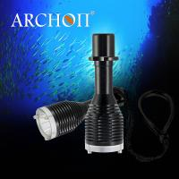 IP68 imperméabilisent la lanterne sous-marine de torche de piqué d
