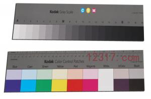 China Kodak Q-14 Gray Scale Kodak Color Control Patches GRAY SCALE TEST CHART with 20 patches on sale
