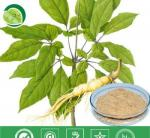 Manufacturer Pure Natural High Qulity Suma Extract, Pfaffia Paniculata Extract, Brazilian Ginseng Extract