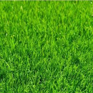 China High quality garden landscape chinese outdoor artificial grass turf with cheap price on sale