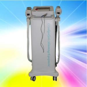 China Pulse Cryolipolysis Slimming Machine / Beauty Slimming Machine For Home Use on sale