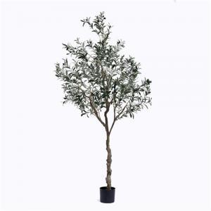 China Plastic Olive Tree on sale