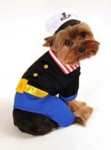 China Wholesale PET Costumes Sailorman Dog Costume on sale