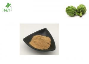 China Herb Part Artichoke Extract Powder Brown Yellow Color With TLC Test Method on sale