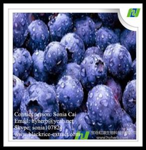 China factory supply pure natural organic bilberry extract,anthocyanidins 25% on sale