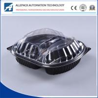 China OEM Disposable Plastic Containers , Disposable Clear Food Box Plastic Box on sale