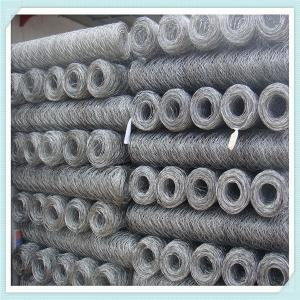 China galvanized or PVC coated hexagonal chicken wire mesh on sale