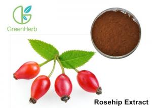China Max 5% Moisture Fruit Extract Powder Brown Fine Bulk Rosehip Extract Powder​ on sale