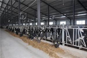 China A construção de aço da construção de exploração avícola derrama para crocita cabras do pato/ganso de /Chicken/ on sale
