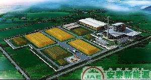 China Biomass Gasification Power Plant on sale