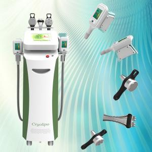 China Professional Cryolipolysis coolsculpting body slimming weight loss machine CE approval on sale