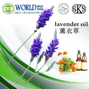 China Эфирное масло лаванды оптовое/наиболее хорошо цена на нефть лаванды on sale