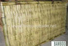 China Bamboo Fencing on sale
