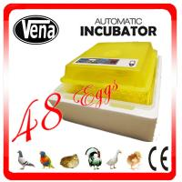 48 eggs mini incubator 12V or 110V or 220V full automatic mini chicken egg incubator for sale