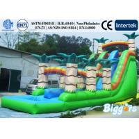 Durable PVC Inflatable Water Slide Pool Water Park Jungle vinyl / tarpaulin