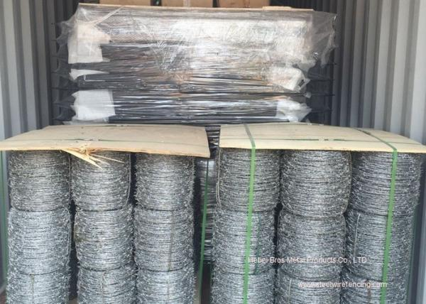 Hot Dipped Galvanized Barbed Wire Mesh Roll / Barbed Wire Mesh Fence ...