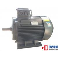 Explosion Proof Chemical Industrial Electric Motors / Electrical Induction Motor
