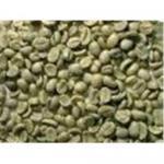 Chlorogenique de Acide, café de extrait de grain de