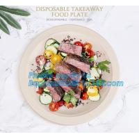 custom printed party plates disposable sugarcane bagasse plate Biodegradable Bamboo disposable paper plates bagease pack