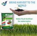 S + el magnesio + el Ca Fertiizer soluble en agua para Wtermelon contienen los alimentos orgánicos ricos N P K