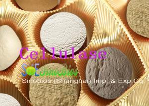 China Acid Cellulase Additive Animal Feed Enzymes Cellulose Powder Szym-ACE10FE on sale