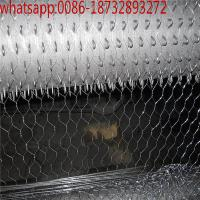 China hexagonal small hole chicken wire mesh poultry wire 1/2 hex galvanized /PVC coated wire mesh supplier on sale