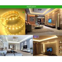 Holiday Garden Home Xmas Decoration RGB LED AC220V SMD 5050 Waterproof
