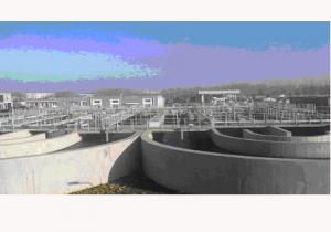 China C4030 Cationic Polyacrylamide for belt press, flocculant coagulation and sludge dewatering on sale