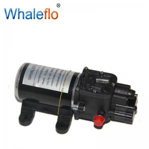 China Whaleflo FL-3203 Diaphragm Water Pump 100PSI 24V High Pressure For Car Wash Price on sale