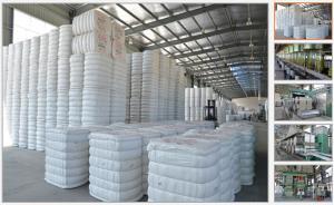 China China recicló la fibra química Co., Ltd. de Fujian Minrui de la fabricación de PSF on sale