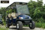 6 carrinhos de golfe bondes confortáveis do passageiro para a economia de energia da montanha