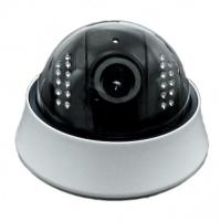 Outdoor Real-time HD Dome IP Camera PoE , IR-15M With IR-cut , Vandal Proof