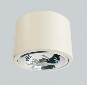 China LED AR111-FDL1501 /FDL1001 LAMPS SURFACE MOUNTED DOWNLIGHT supplier