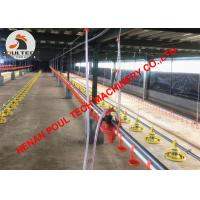 China El Salvador Chicken Farming Broiler Deep Litter System & Plastic Slatted Floor System with Automatic Feed & Drinker Line on sale