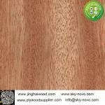 Bintangor,oak,maple natrual veneer