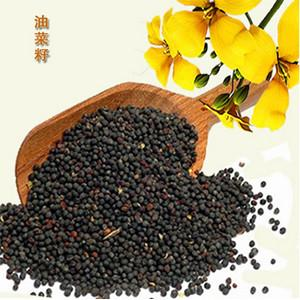 China Rapeseed oil/Canola seeds oil process and rapeseed oil refining equipment on sale