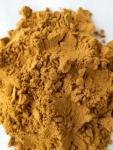 Chinese Herb Polygonum Multiflorum He Shou Wu Foti Root Extract 10% powder