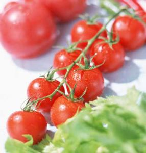 China Price Canned 800g Tomato Paste Factory on sale