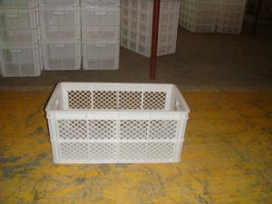China Plastic Chicken Egg Collecting Baskets Egg Boxes on sale