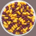 cápsulas de gelatina vazias