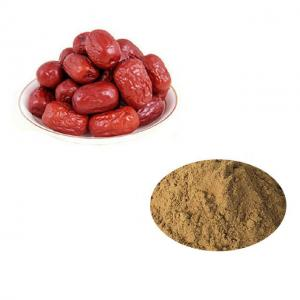 China Factory Supply Premium Natural Ferment Jujube Fruit Extract Powder Fruit Extract on sale