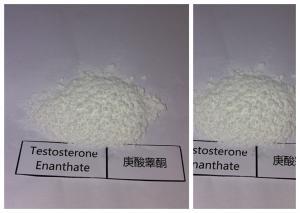 China Raw Bulking Cycle Steroids Testosterone Enanthate White Powder 315-37-7 on sale