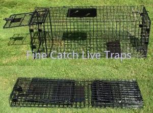 China Folding cage traps for animal handling on sale