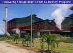China Screw steam generators recover heat in Palm kernel oil process to eletricity wholesale