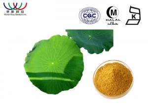 China Water Soluble Lotus Leaf Extract Reducing Fat Ingredients Characteristic Odor on sale