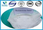 Boldenone Prohormone Anabolic Steroids For Muscle Building Boldenones Base