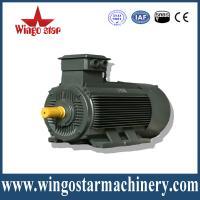 High efficiency ac electric motor
