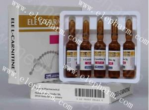 China Hot sale high quality ELE-l-Carnitine injection 2g/5ml for weight lossing with competitive price wholesale
